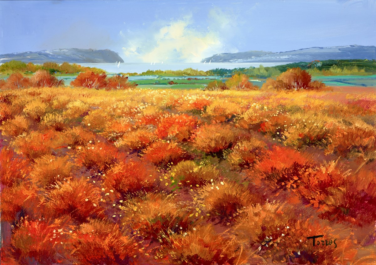 Seaside Fields II by torres -  sized 26x18 inches. Available from Whitewall Galleries